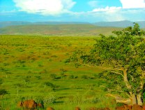 Scenic View, Kaokoland.