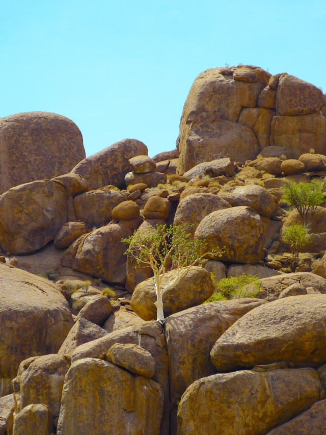 Twyfelfontein (428)